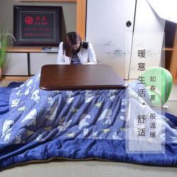 Japanerne sparer 90% på udgift til opvarmning - via Kotatsu