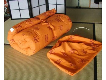 Camping Futon/Bed-n-Bag
