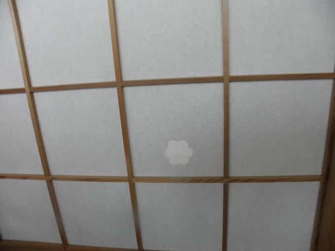 Ricepaper repairset