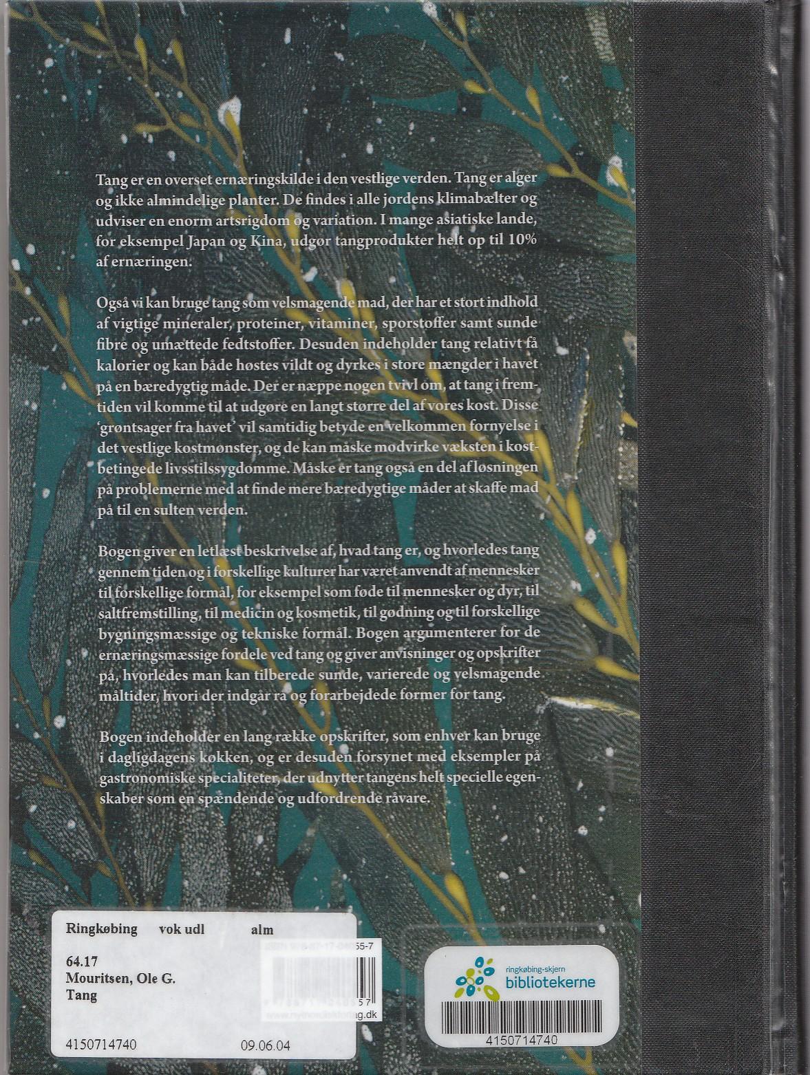 Bogen Tang, bagsiden